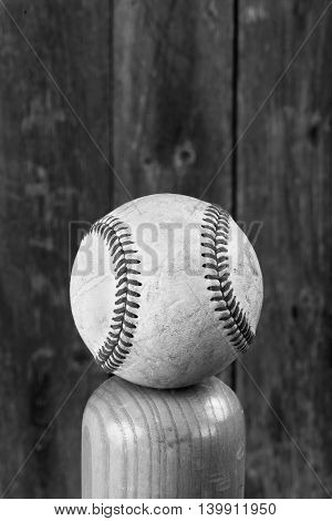 Baseball and wooden bat in black and white with room for your type.