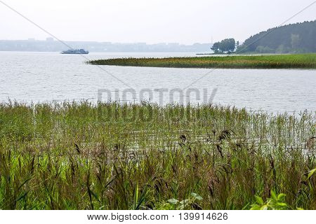 The river Berd Novosibirsk oblast Siberia Russia - July 25 2016: summer landscape on the river