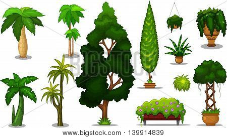 collection of tree cartoon for you design