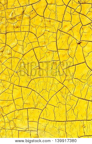 Old Cracked Yellow Paint Texture Closeup