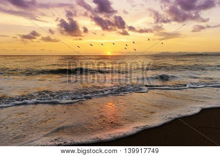 Ocean sunset is a colorful sky filled with magenta colored clouds as birds fly over the water and a gentle wave rolls to shore.