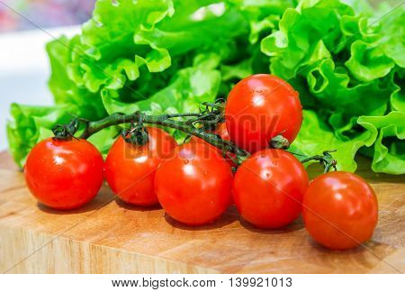 Healthy food from village. Eco food concept. Fresh organic vegetables