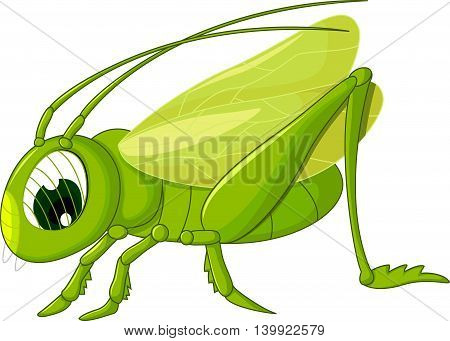 cute green grasshopper cartoon for you design