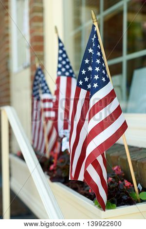 American flags in a flower planter in front of a storefront window.