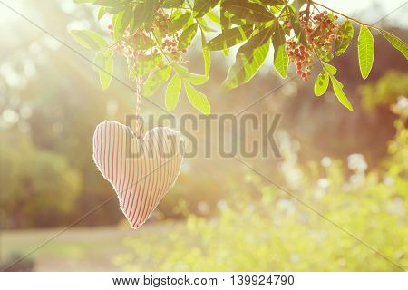 Valentine's day nature background with heart shape
