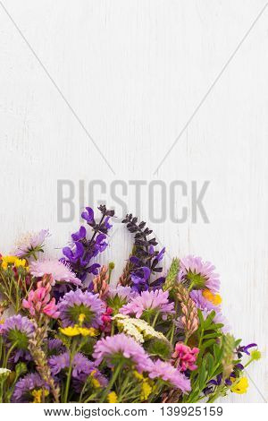 Colorful Bright Flower Blossom Wildflowers Background Nature Spring Summer Bouquet Concept