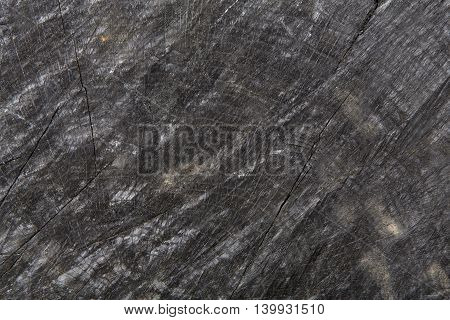 Dark gray or black rustic wood texture closeup. Wooden background. Hardwood surface circle, wooden disc cut out