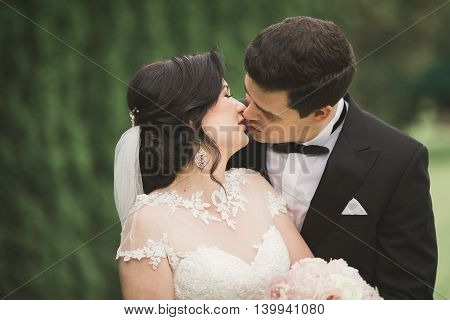 Beautiful romantic wedding couple of newlyweds hugging in park on sunset.