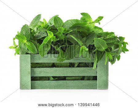 Fresh mint in wooden box, isolated on white