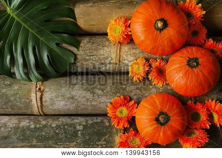 Pumpkins on bamboo trunks with Gerbera flowers and green leaf .
