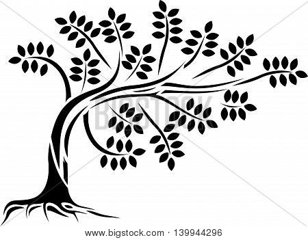 black tree silhouette isolated for you design