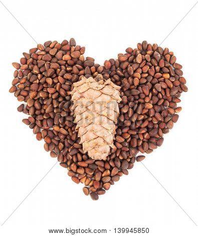 Cedar pine nuts.Heart