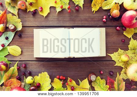 nature, season, inspiration and memories concept - close up of empty book or album in frame of autumn leaves, fruits and berries on wooden table