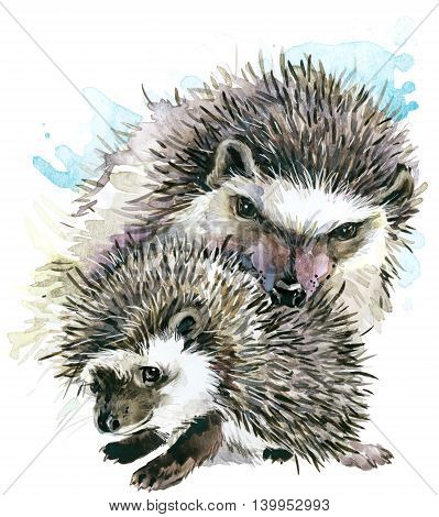 Hedgehog watercolor. Hedgehog and baby Hedgehog. Hedgehog family watercolor illustration. Motherhood watercolor background