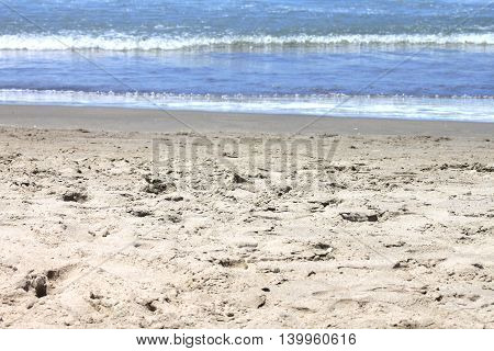 Nature beautiful sand beach background on a summer day