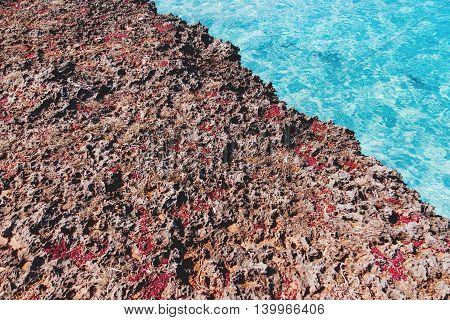 Volcanic tuff coast and azure Caribbean sea. Stone texture. Varadero Cuba.