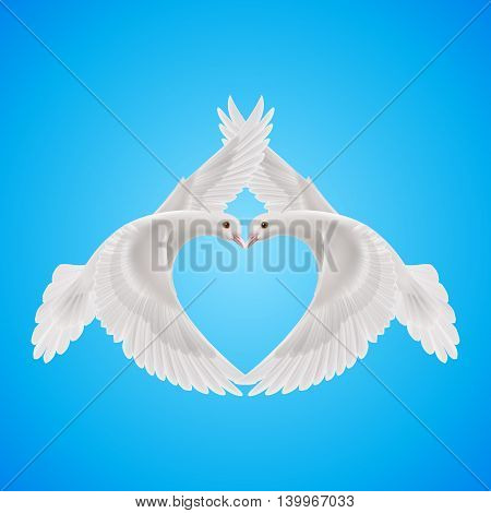 White doves makes form the shape of the heart