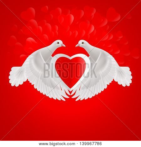 Two white doves holds red heart in wings
