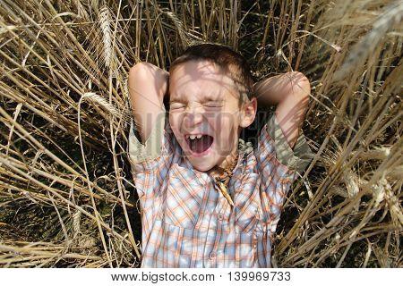 boy lies in wheat field in the summer.