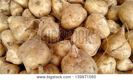 Heap of brown organic healthy vegetable roots