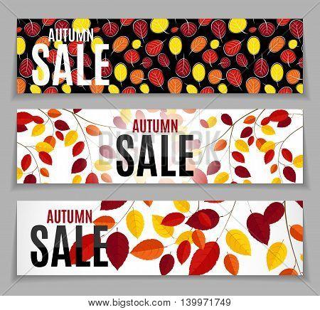 Autumn Leaves Sale Background Vector Illustration EPS10