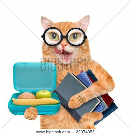 Cat with books and school lunch box. Isolated on white.
