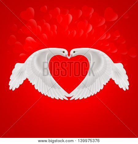 Two white doves make the shape of the wings of the heart