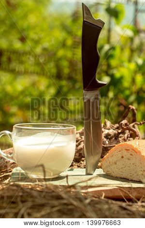 Bread Knife And Milk Cup
