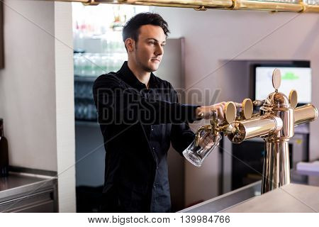 Handsome barkeeper pouring beer in glass from faucet at bar counter