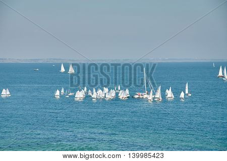 Beautiful Landscape Of The Sea With Many Sails