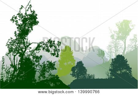Wild forest landscape with mountains and silhouettes of trees. Panoramic landscape with green and dark green deciduous trees and plants