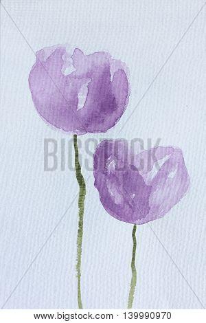 Purple Watercolour Tulips