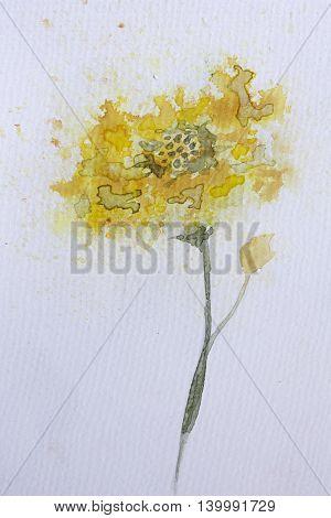 Yellow Watercolour Flower