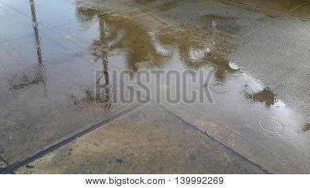 puddle of water on a side street, reflecting coconut trees, power poles, raindrops speckling surface, Songkhla, Thailand