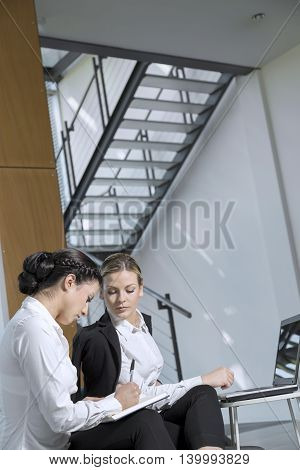 Two business colleagues working together in an office