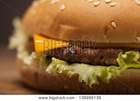 Fresh Burger With Fly