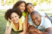 image of mixed race  - Portrait of Happy Family Piled Up In Park - JPG