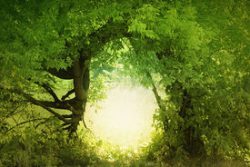 picture of fantasy landscape  - Door to the fairy land - JPG