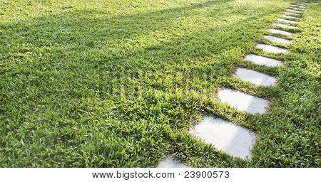 Diagonal Stepping Stones Accross A Lush Green Lawn