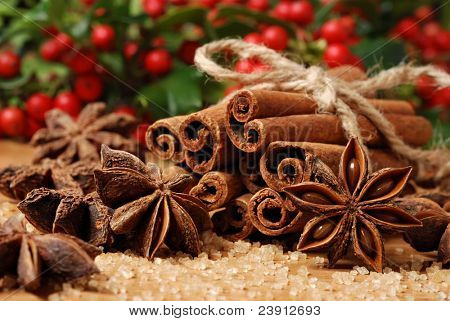 Holiday still life of spices and pure cane sugar with freshly cut holly branches in soft focus in background.  Macro with shallow dof.