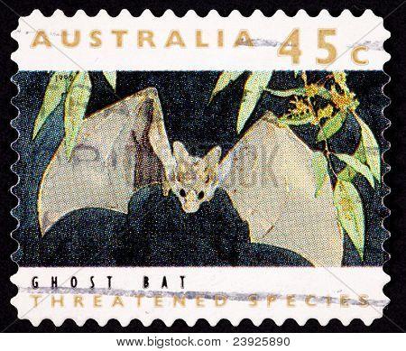 Cancelan sello australiano Ghost Bat, Macroderma Gigas, falso vampiro