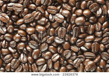 Many Coffee Beans Background Texture