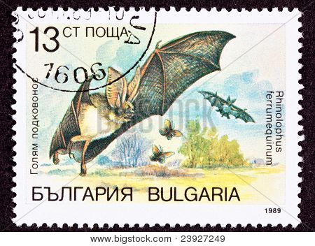 Bulgarian Postage Stamp Flying Horseshoe Bat Rhinolophus Ferrumequinum Hunting Bugs
