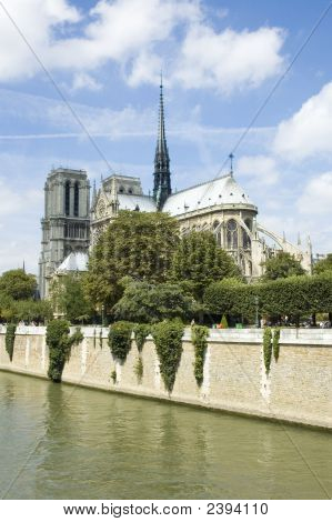 Notre Dame De Paris In The Summer Vertical