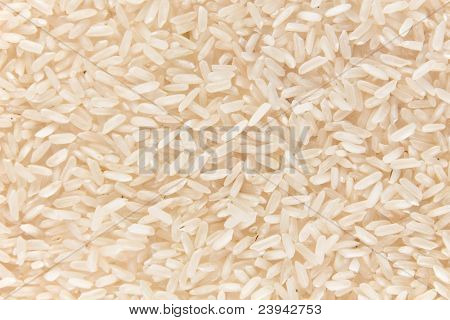 Background of rice.
