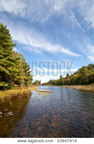 Clearwater lake surrounded by forest