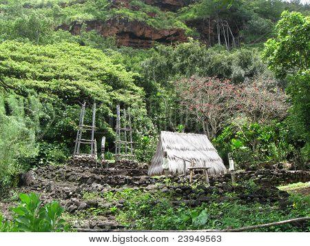 Ancient Hawaiian Heiau Of Lono