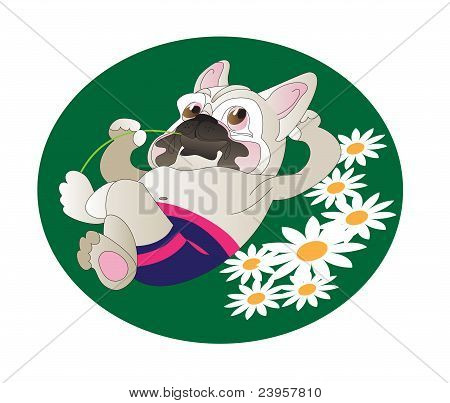 Comical Drawing Of  French Bulldog