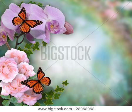 Butterflies orchids and roses background