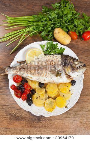 Goldbrasse Fisch